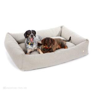 Produktfotografie Hundebett mit Strolchi und Sissi für E-Commerce
